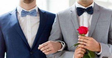 Страны где разрешены однополые браки список